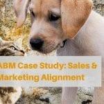 ABM Case Study